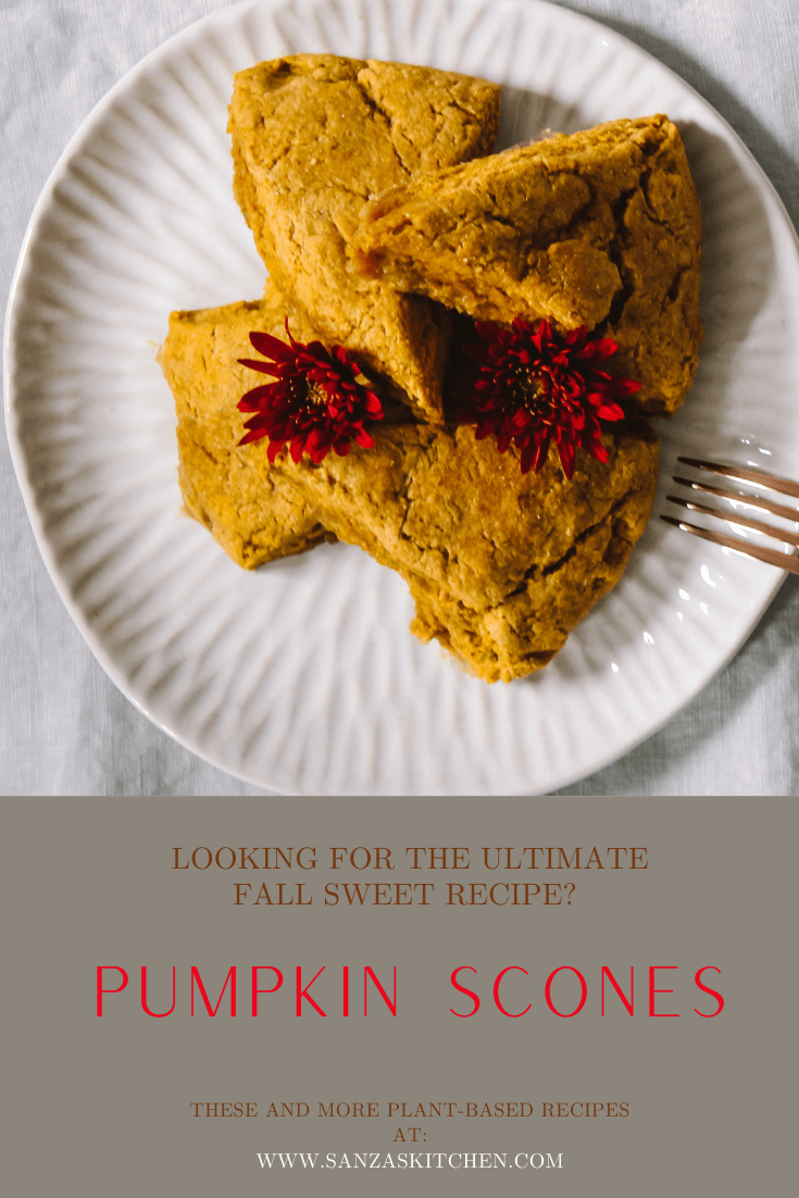 Sustainable and Vegan Lifestyle influencer shares her ultimate fall recipe!!